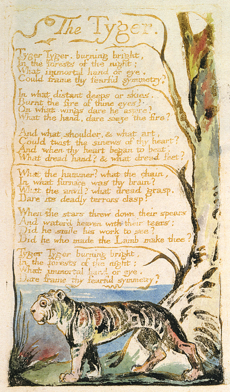 an analysis of the theme in william blakes poem the tyger The poem's opening line, 'tyger tyger, burning bright' is among the most famous opening lines in english poetry (it's sometimes modernised as 'tiger below is this iconic poem, followed by a brief but close analysis of the poem's language, imagery, and meaning tyger tyger, burning bright, in.